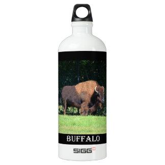 Búfalo (bisonte) Kansas, Oklahoma, Wyoming