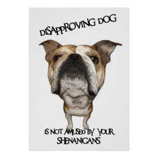 Buldogue de desaprovação do cão não divertido por poster