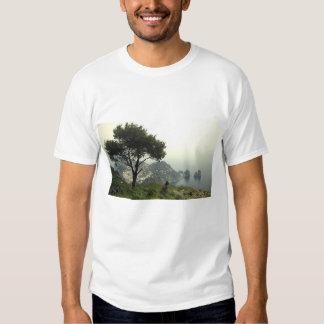 Buldogue francês em Capri Camiseta