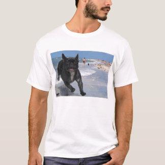Buldogue francês em Sanibel, FL Camiseta