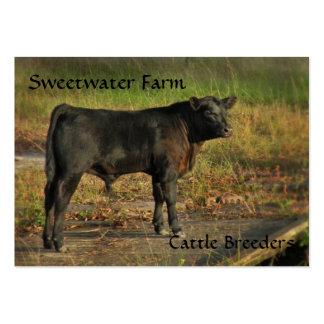 Bull ou cartão de visita carnudo da fazenda de gad