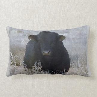 Bull preta ocidental na cena do inverno travesseiro