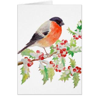 Bullfinch no ramo do azevinho no cartão da neve