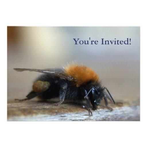 Bumble o convite de festas da abelha