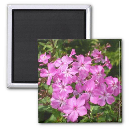 Buquê cor-de-rosa bonito da flor ímã quadrado