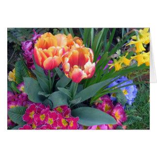 Buquê do primavera: prímula, tulipas, narciso cartão comemorativo