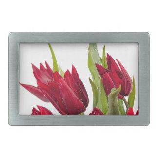 Buquê vermelho das tulipas