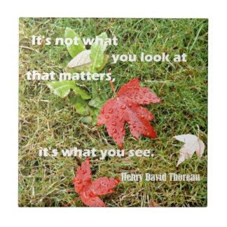 byThoreau das citações: Não é o que você olha