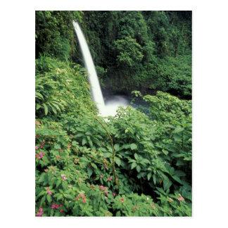 CA, Costa Rica. Cachoeira e impatients de La Paz Cartão Postal