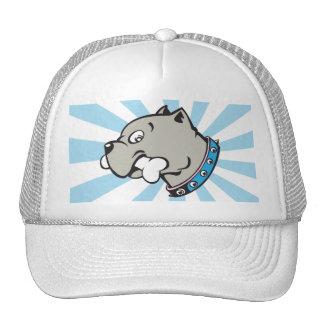Cabeça de Pitbull dos desenhos animados - chapéu Boné