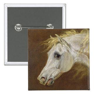 Cabeça de um cavalo árabe cinzento (óleo em canvas bóton quadrado 5.08cm