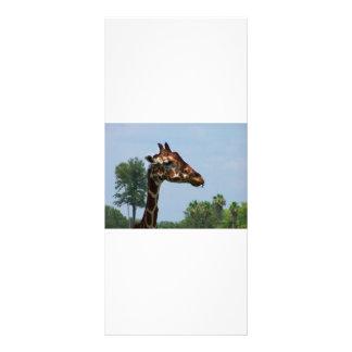Cabeça do girafa contra a imagem da fotografia do  10.16 x 22.86cm panfleto
