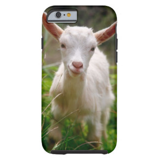 Cabra do miúdo capa tough para iPhone 6