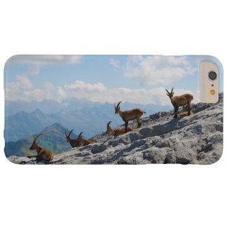 Cabras de montanha selvagens do íbex alpino capa barely there para iPhone 6 plus
