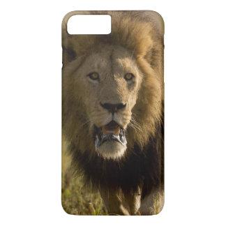 Caça masculina do leão capa iPhone 7 plus
