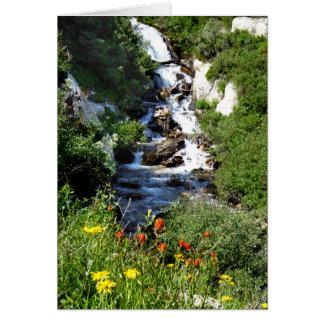 Cachoeira com Wildflowers, cartão vazio do