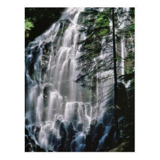 Cachoeira na floresta, Oregon Cartão Postal