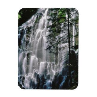 Cachoeira na floresta, Oregon Foto Com Ímã Retangular