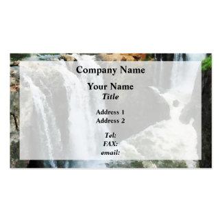 Cachoeira Paterson NJ Cartão De Visita