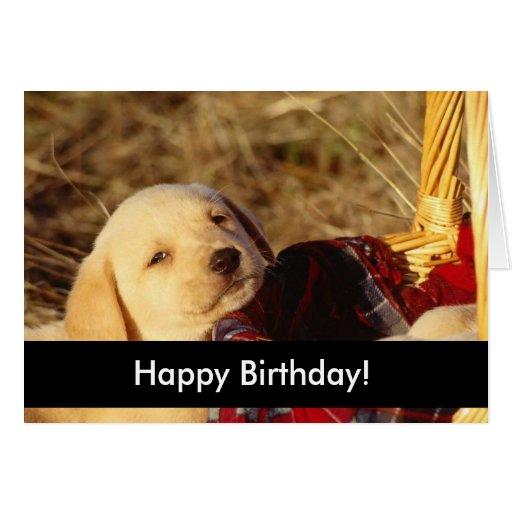 Cachorrinhos do feliz aniversario cartão comemorativo