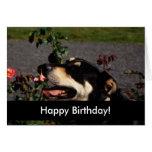 Cachorrinhos do feliz aniversario cartões