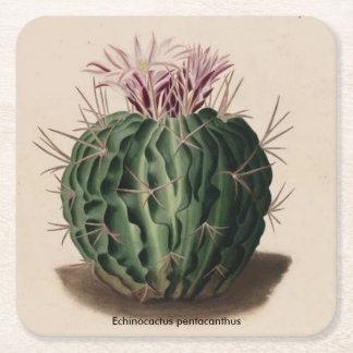 Cacto do pentacanthus de Echinocactus Porta-copo De Papel Quadrado