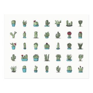 Cactos e cartão dos Succulents