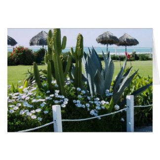 Cactos em México, praia de Rosarito Cartão Comemorativo