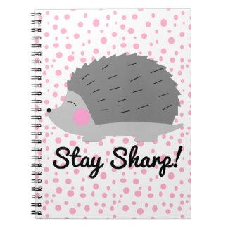 Caderno afiado do ouriço da estada