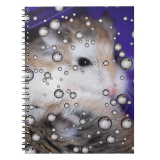 Caderno ausente dos hamster