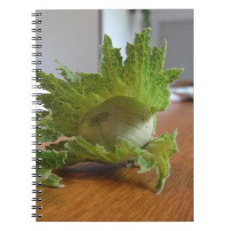 Caderno Avelã verdes frescas em uma mesa de madeira