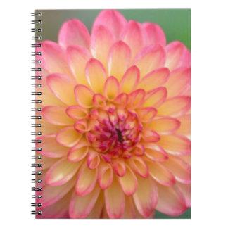 Caderno Beleza de cora