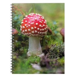 Caderno Beleza do outono