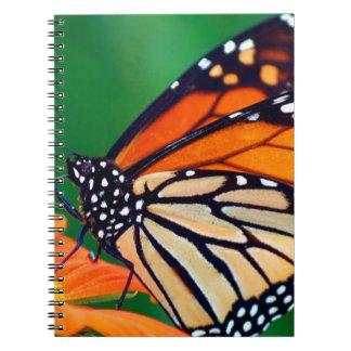 Caderno Borboleta de monarca bonita