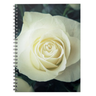 Caderno Caneca do rosa branco