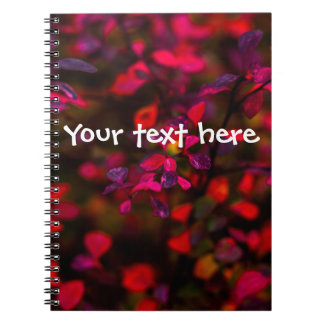 Caderno Chamas do outono