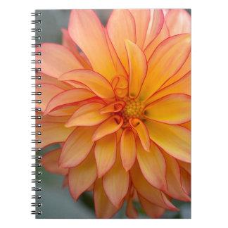 Caderno Cheio da glória