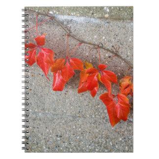 Caderno colorido brilhante das folhas de outono