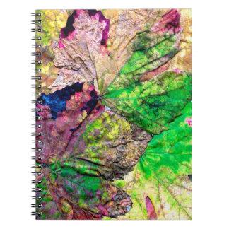 Caderno colorido das folhas