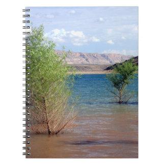 Caderno da angra das codorniz