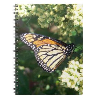 Caderno da borboleta