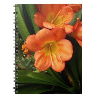 Caderno da flor