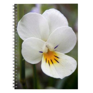 Caderno da foto da espiral do amor perfeito