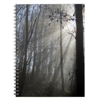 Caderno da foto da névoa da manhã da floresta