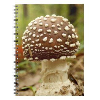Caderno da foto do cogumelo do boné da pantera
