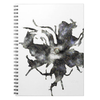 Caderno da galáxia