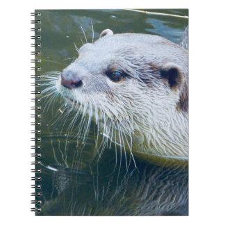 Caderno da lontra
