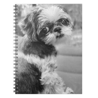 Caderno da menina de Shih Tzu