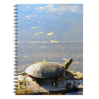 Caderno da tartaruga