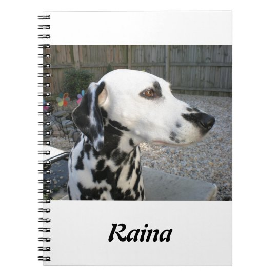 Caderno Dalmatian - o Reina de Cindy
